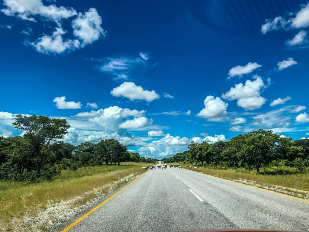 The highway in the Caprivi Strip, Namibia.