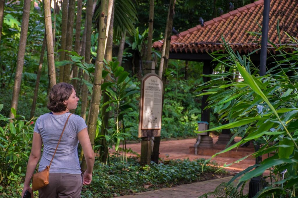 What to do in Singapore in 4 days: walk around Fort Canning Park