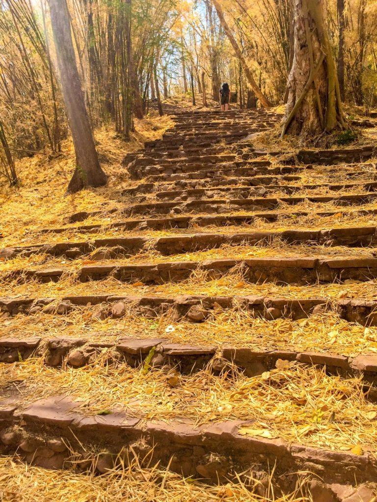 Phu Kradueng National Park has a lot of stairs