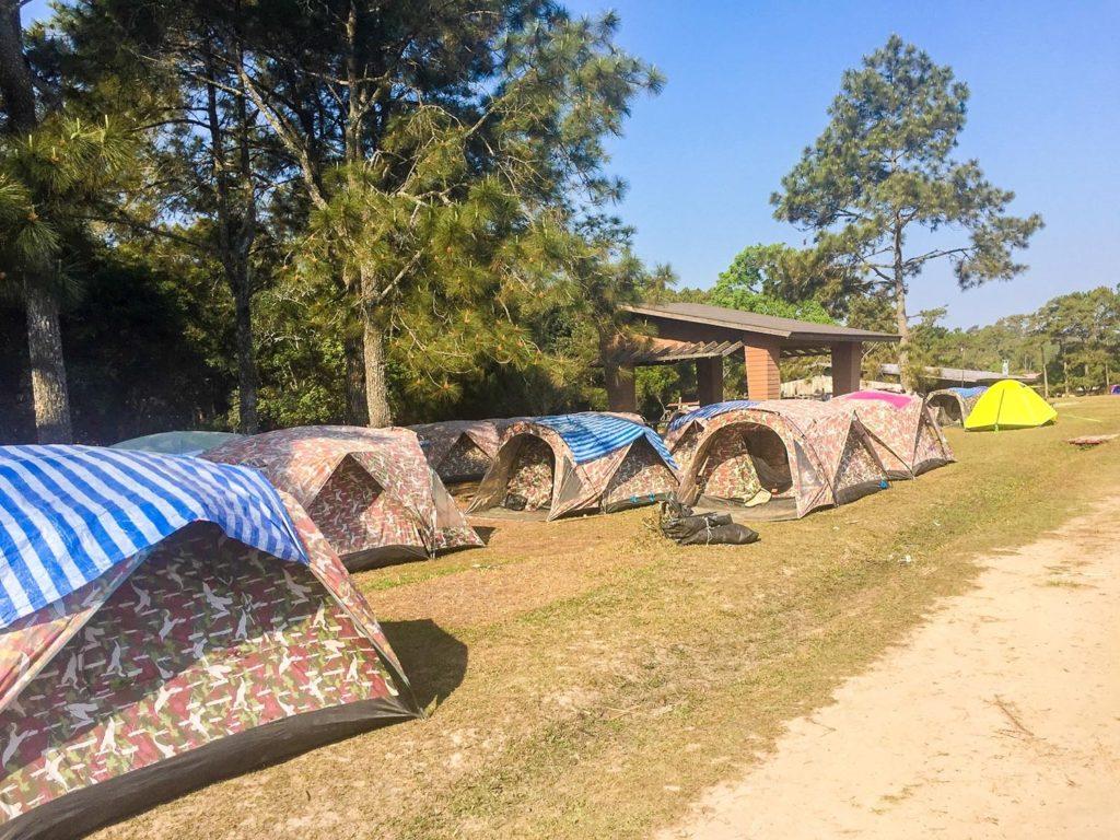 The tents at Phu Kradueng National Park